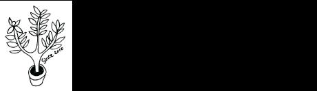 2010オリーブの木
